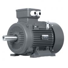 3,0 kW B3 OMT4 100L2 400/690V SILNIK